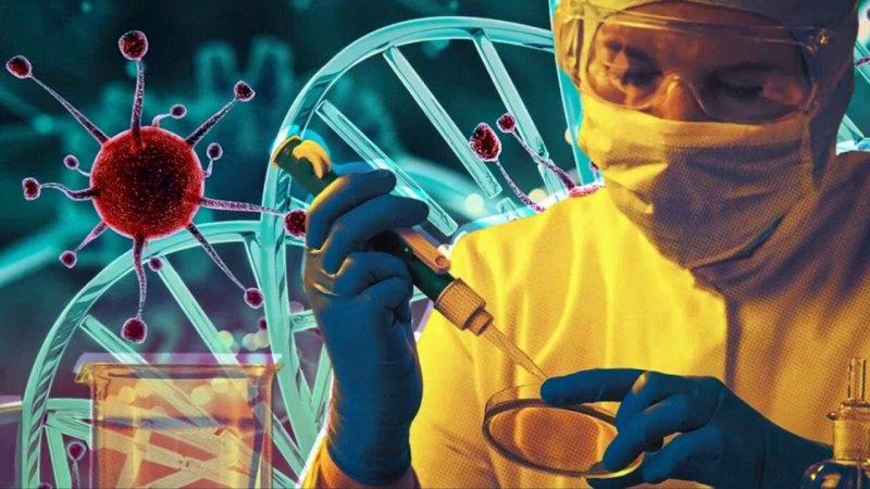 Коронавирус – ученые подтверждают коллективный перекрестный иммунитет