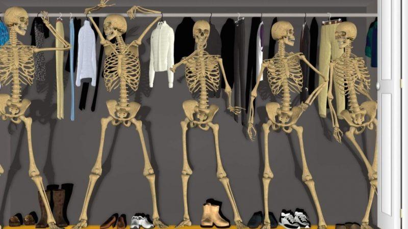 Скелет в шкафу пензенских эсэров или Ответит ли депутат Плахута за партийный бюджет?