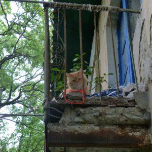 Повышение платы за капремонт – личная заслуга губернатора Ивана Белозерцева