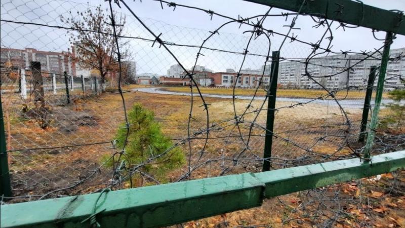 Воспитание и профилактика в школах в свете Казанской трагедии
